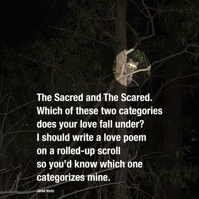 The Sacred and The Scared