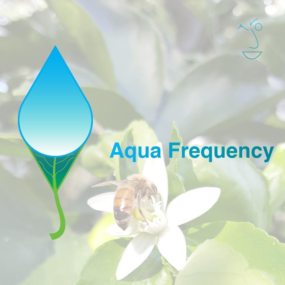 Aqua Frequency